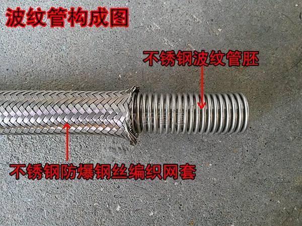 金属软管解剖图